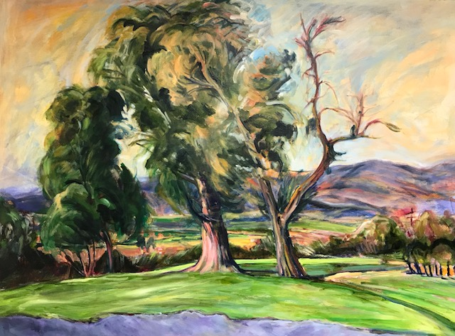Pat.Richards.Dodds.Las Posas Valley 1987.oil on cnavas. 30x40